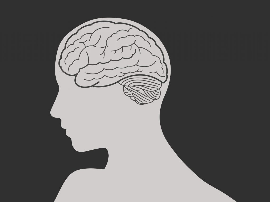 Brain and woman face silhouette vector illustration.